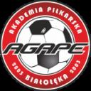 akademia piłkarska akademiapilkarska11.pl